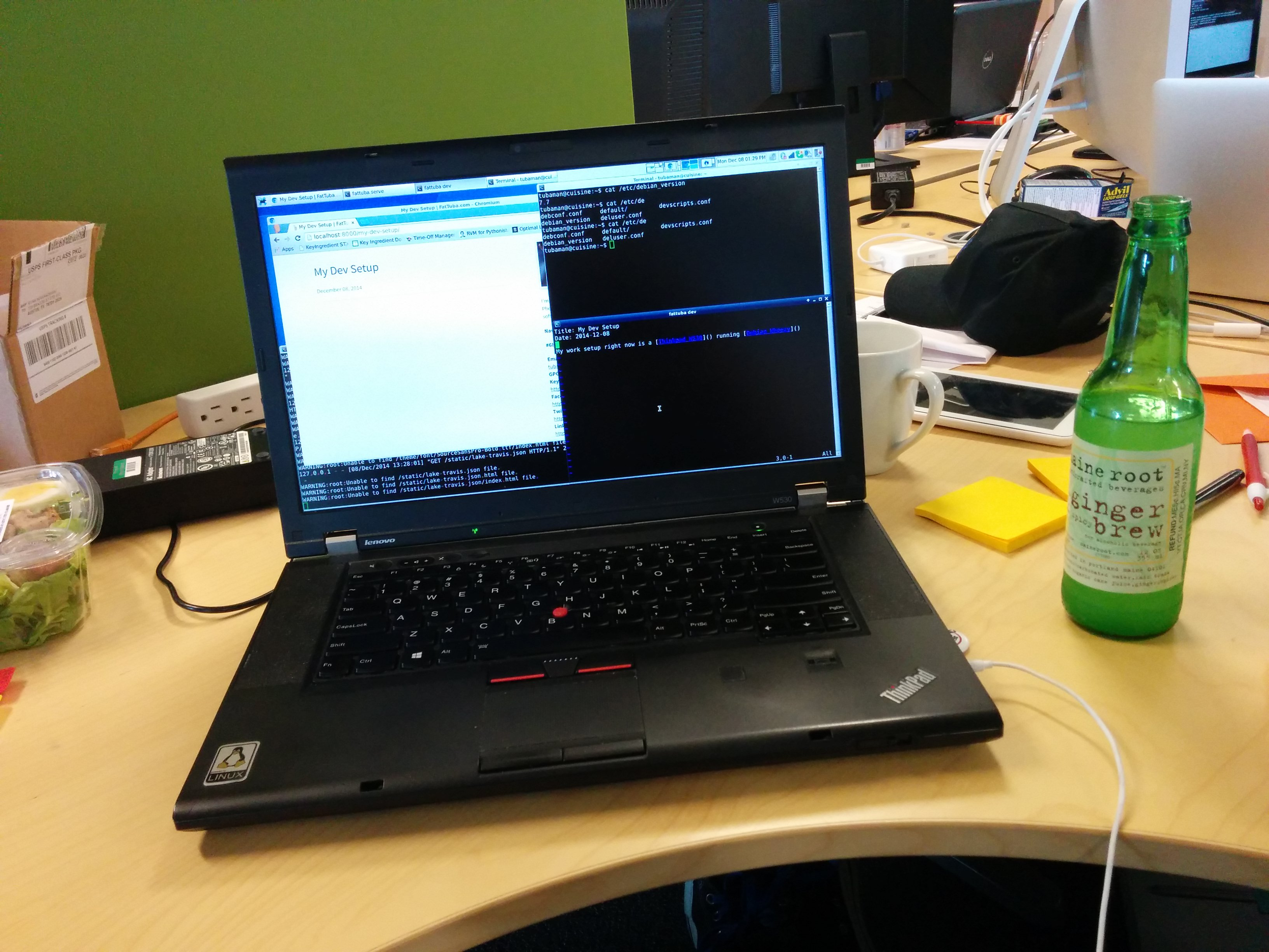 Thinkpad running Debian Wheezy